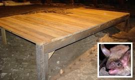 """<a href=""""http://www.netopiere.sk/databaza/lok-k06/"""">Demjata - čistenie a položenie ochrannej podlahy</a>"""