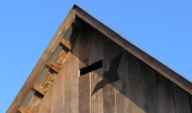 Vletový otvor do upraveného podkrovia nad stajňou na Mašekovom mlyne