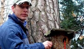 Klátiková búdka je ideálnou náhradou stromových dutín. Foto: R. Slobodník