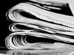 Tlačová správa: Raniak hrdzavý sa stal netopierom roka 2016